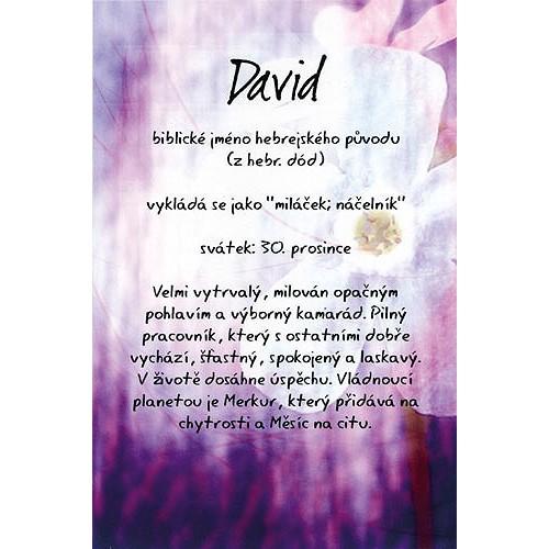 přání k svátku david Apollo store: Blahopřání Kouzlo tvého jména David | RAKETA.cz přání k svátku david